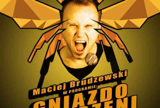 """Stand-up: Maciej Brudzewski w nowym programie """"Gniazdo szerszeni"""""""